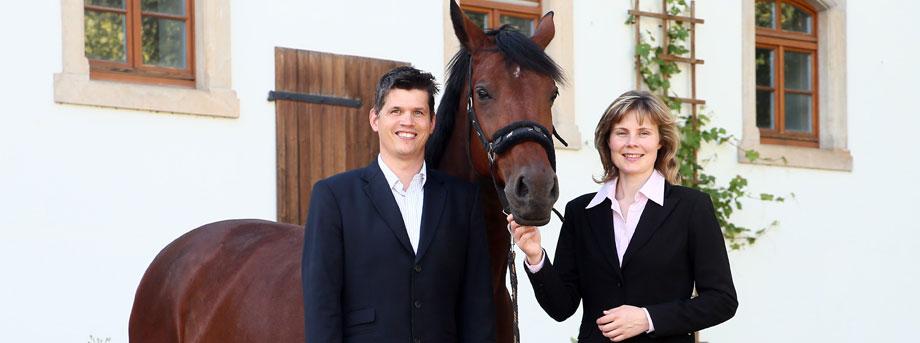 Ausbildung zum Coach für pferdegestützte Trainings